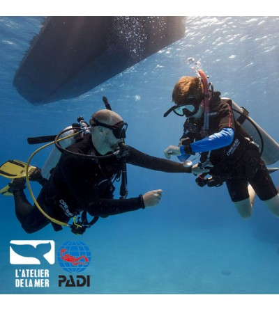Formation plongée Padi Scuba Diver pour débutants dès 10 ans - Atelier de la Mer - Marseille