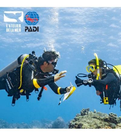 Formation PADI Divemaster encadrée par des professionnels à Marseille en 9 jours continus dès l'Advanced Open Water Diver