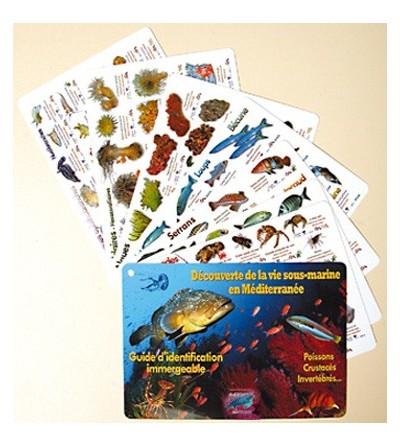 Guide de découverte de la vie sous marine en Méditerranée - jeu de 8 plaquettes immergeables