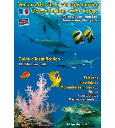 Découverte de la vie sous-marine de l'Océan Indien - Mer Rouge