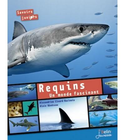 Requins un monde fascinant
