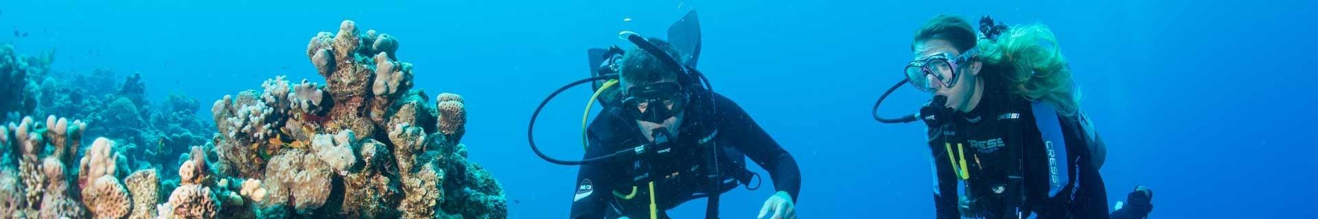 Formations de plongée sous-marine